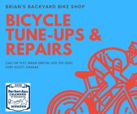 Brian's Backyard Bike Shop