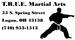 T.R.U.E. Martial Arts