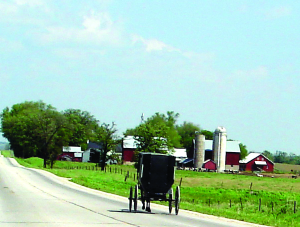 Gallery Image Amish%20Buggy-Backroads%20CD%20Tour.jpg