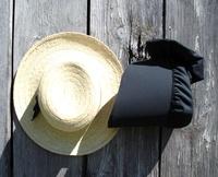 Amish Backroads Tour