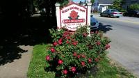 Red Rose Inn Bed & Breakfast