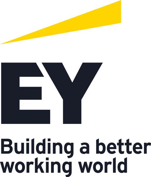 Ernst & Young Vietnam Ltd.