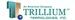 Trillium Teamologies, Inc.