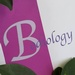Bodiology Medical Spa & Body Retreat