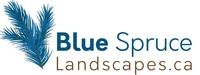 Blue Spruce Landscapes