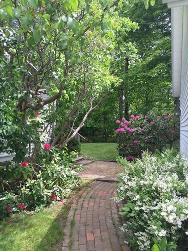 Gallery Image AS-walkway.jpg