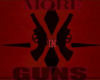 More in Guns LLC