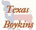 R&D Boykin Spaniels