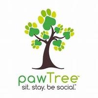 Paw Tree