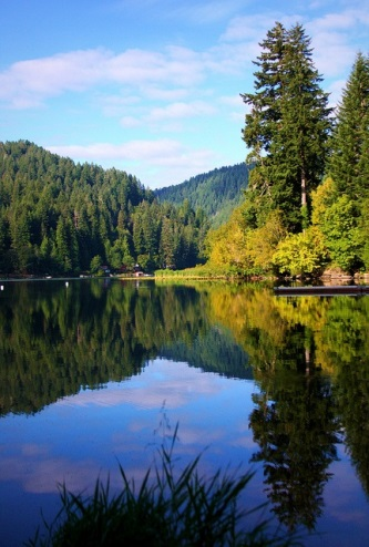 The scenic beauty of the Oregon Coast Range at Loon Lake