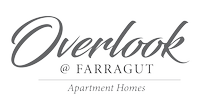 Overlook @ Farragut