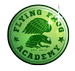 Flying Frog Academy