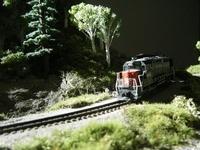 Poggies Trains