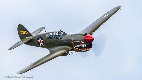 P-40 Kitty Hawk