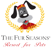 The Fur Seasons