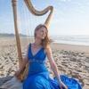 Lady and a Harp LLC
