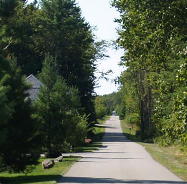 Gallery Image lane%20with%20trees_190520-024228.png