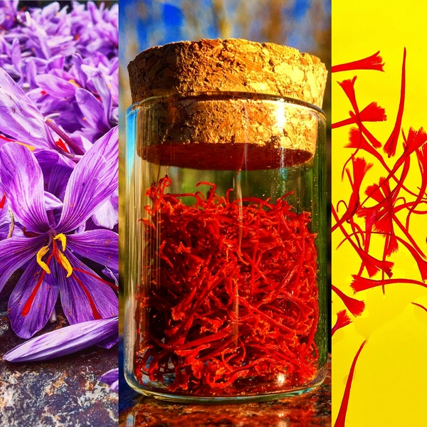 True Saffron Producers Inc.