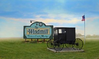 Windmill Farm and Craft Market, The