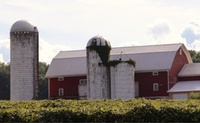 Clearview Farms