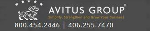 The Avitus Group