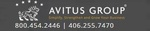 The Avitus Group