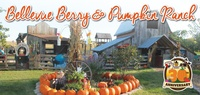 Bellevue Berry Farm & Pumpkin Patch