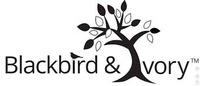 Blackbird & Ivory Boutique