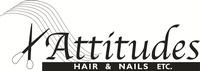 Attitudes Hair and Nails Etc.