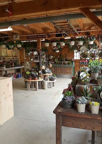 Gallery Image Inside%20Barn%20with%20Flowers_290121-085749.JPG