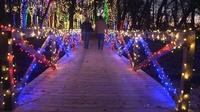 Gallery Image Fultonvalleyfarms_country_christmas_lights_bridge_couple-3.jpg