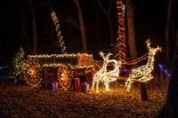 Gallery Image Fultonvalleyfarms_country_christmas_lights_wagon-lighted_reindeer.jpg