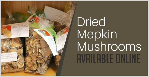Gallery Image Dried-Mepkin-Mushrooms(1).jpg