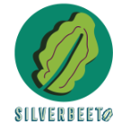 Silverbeet Creative Co.