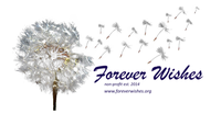 Forever Wishes Inc.