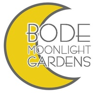 Bode's Moonlight Gardens