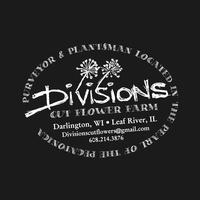 Divisions by Jason