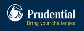 Martin R. Mellin, CLU®, RICP® | Prudential Advisors | Southern New England Financial Group