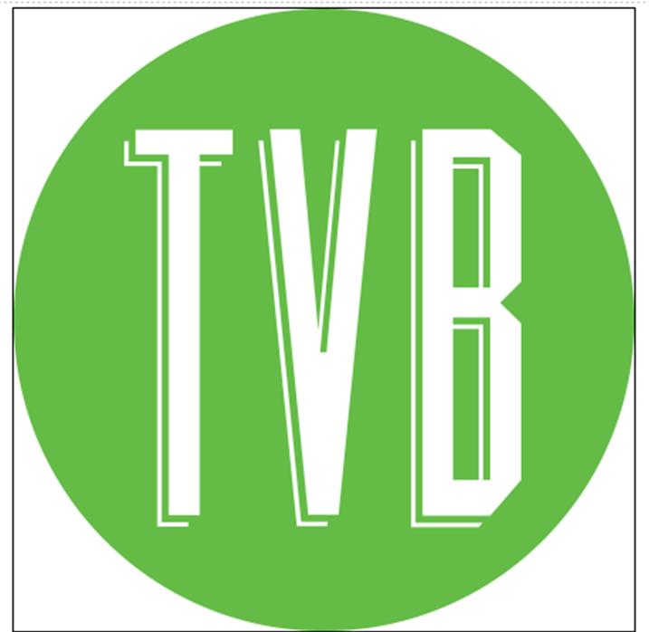 The Visual Brand, LLC (TVB)