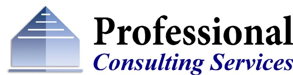 Professional Consulting Services