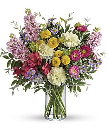 Gallery Image viola.flower2.jpg