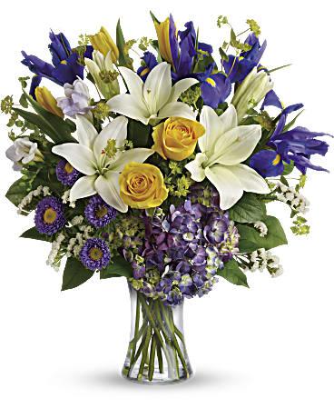 Gallery Image viola.flower3.jpg