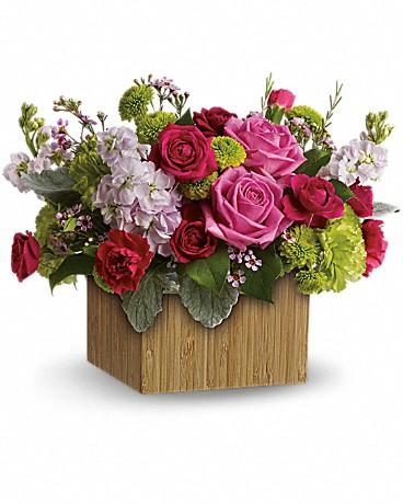 Gallery Image viola.flower4.jpg