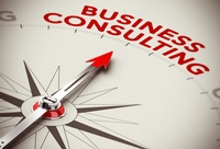 Susan Price Consulting