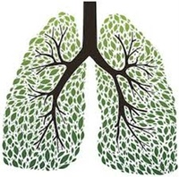 COPD Respiratory Services, LLC
