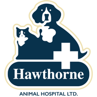 Hawthorne Animal Hospital - Troy