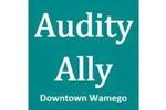 Audity Ally