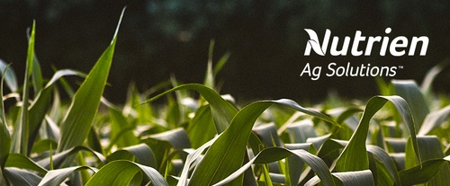 Nutrien Ag Solutions - Pipestone