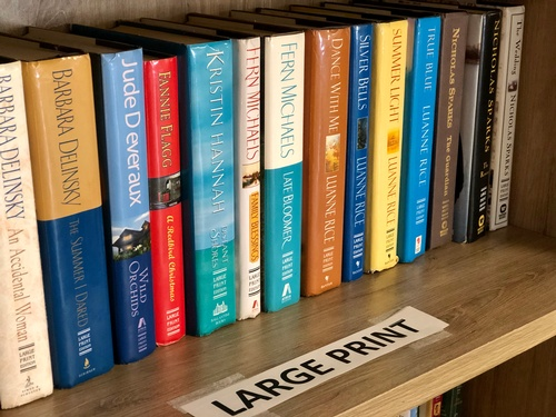Large Print Books in Lending Library - Photo by Erica Volkir