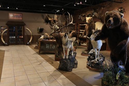 Legend's Showroom